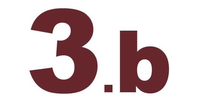 3.b  klase